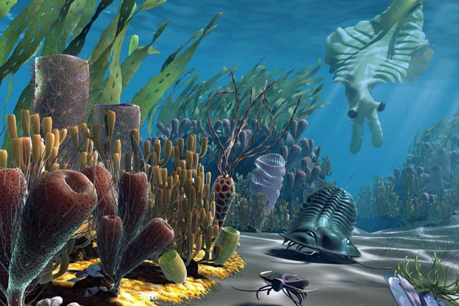 Кембрийский мир, часть 1: Чьим предком был подводный аэростат