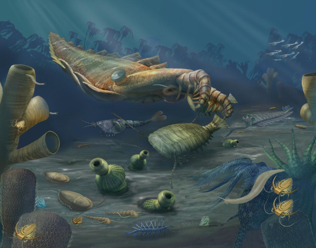 Кембрийский мир, часть 2: Сильнейший хищник древнего моря