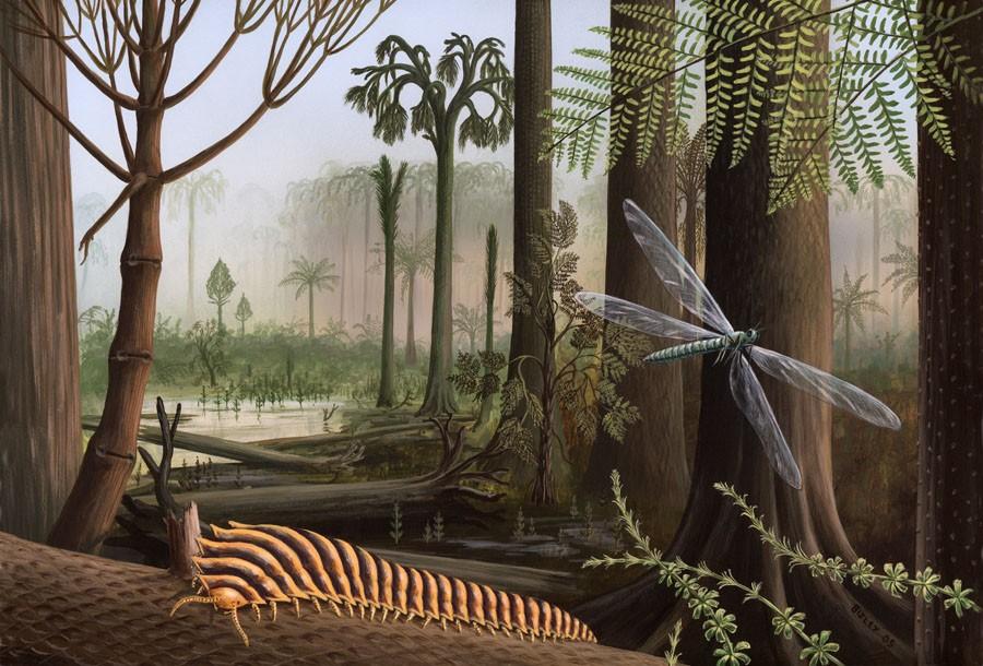 Каменноугольный период: Как у Земли появилась новая атмосфера