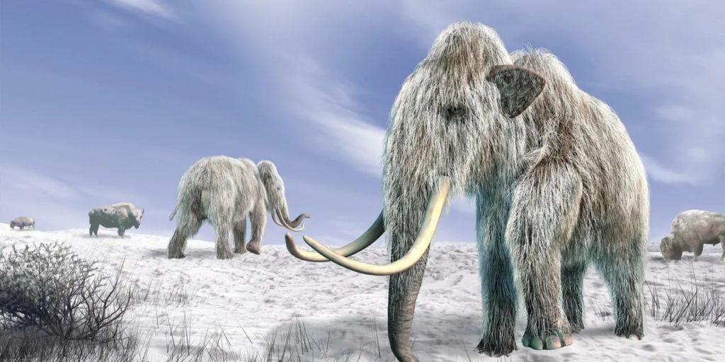 Ледниковый период: что творилось на Земле на самом деле?