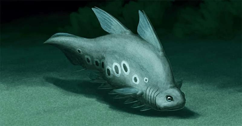 Силур, часть 2: Червивые медузы и оживший рыбий скелет