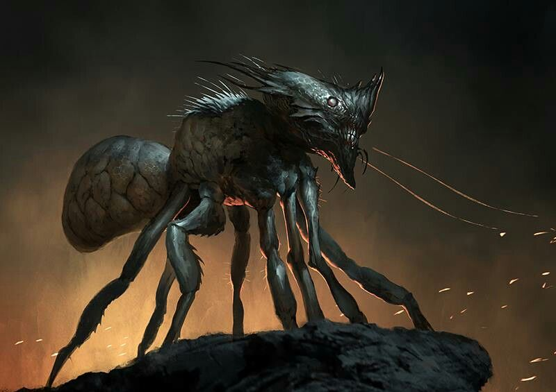 Почему только насекомые образуют «сверхорганизмы»