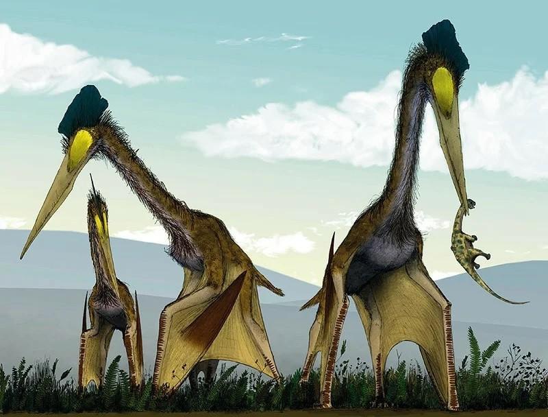Эра драконов: Зачем птерозавры стали гигантами?