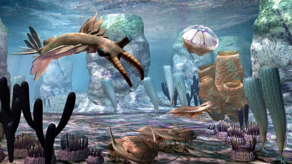 Кембрийский мир, часть 6: Бронированные черви