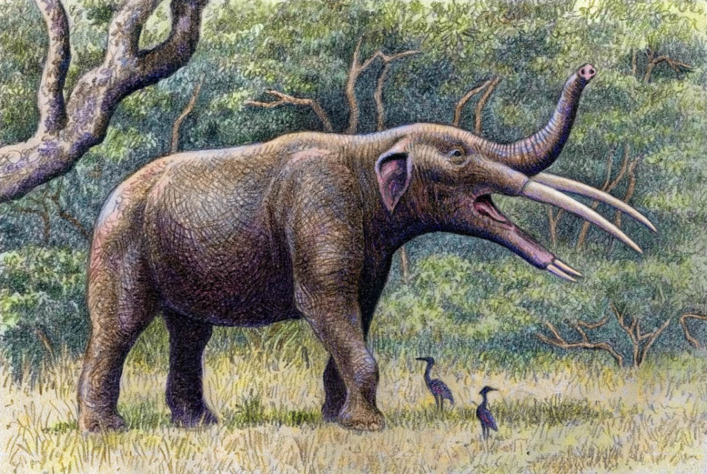 Неоген: Время слонов