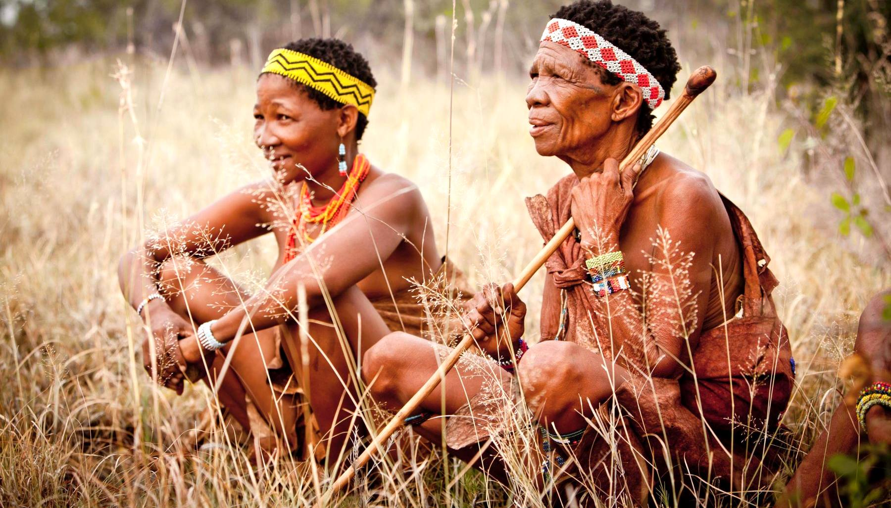 Антропогенез 10-100 тысяч лет назад: Появление современных рас