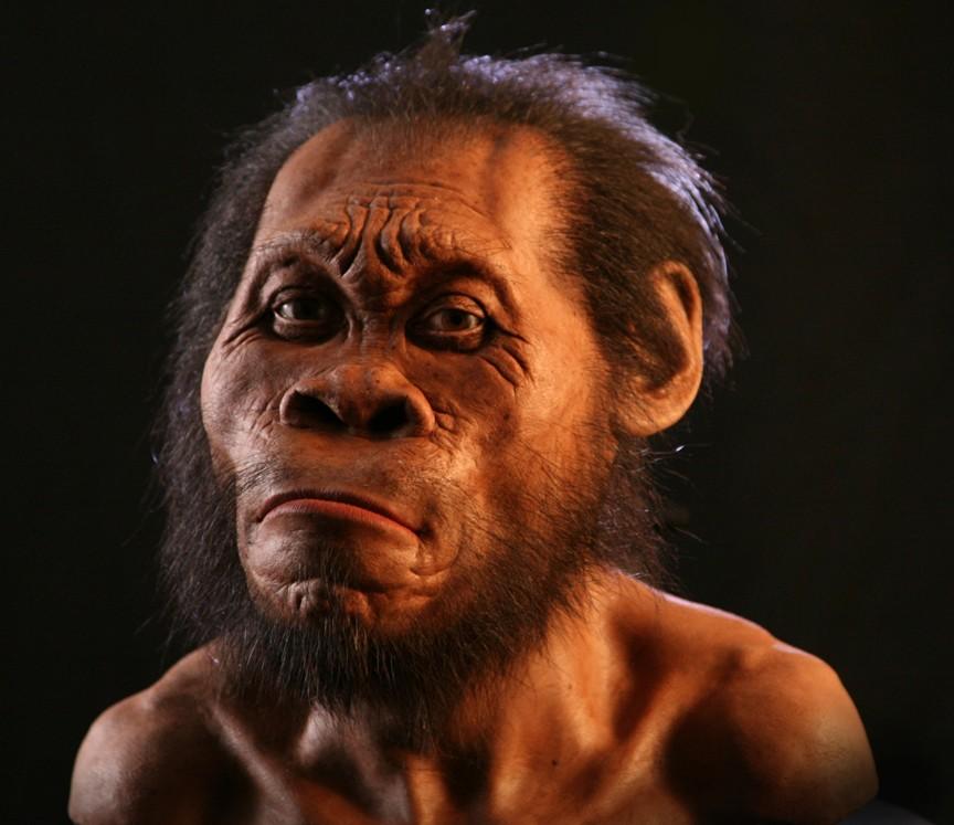 Антропогенез 300-100 тысяч лет назад: Древесные люди Африки