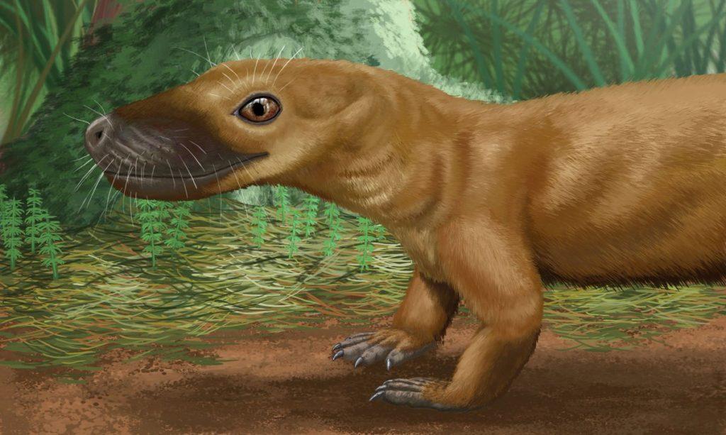 Пермский период, часть 5: Почему у зверозавров ушей не было