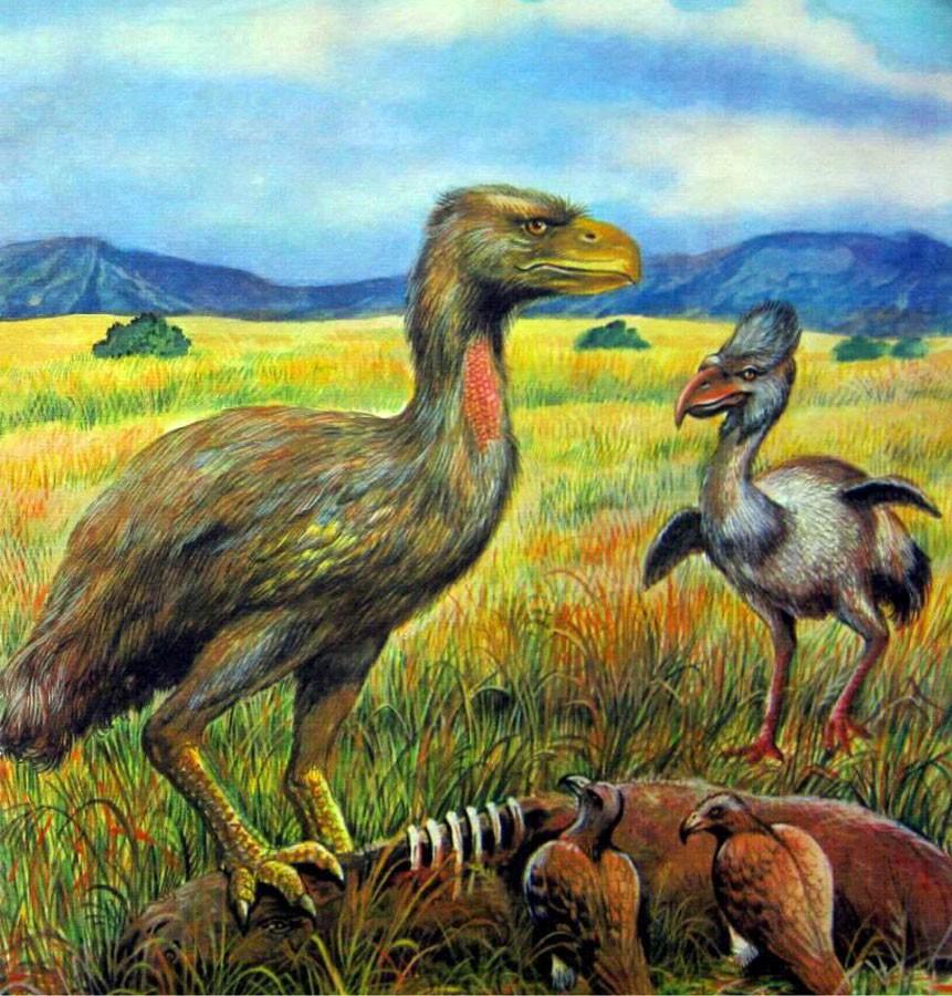 Палеоген: Монстры постапокалипсиса, топтавшие Землю 50 миллионов лет назад