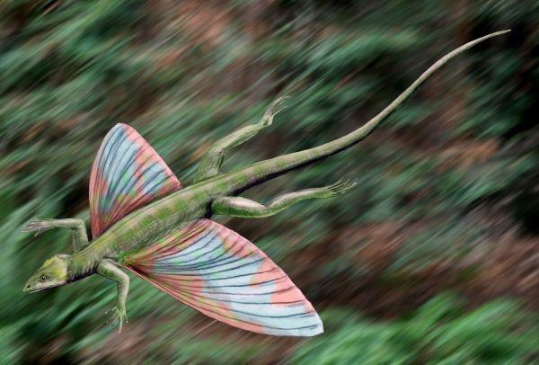Пермский период, часть 3: Летающие ящеры до птерозавров