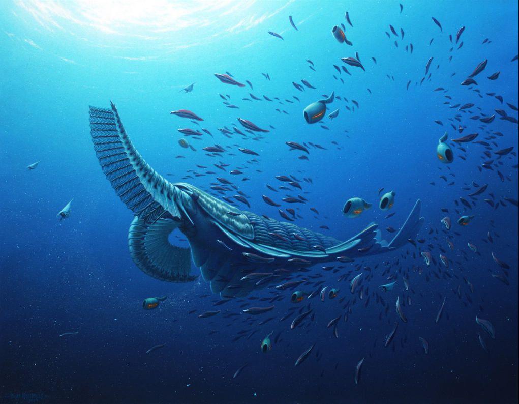 Кембрийский мир, часть 17: Древний панцирный кит
