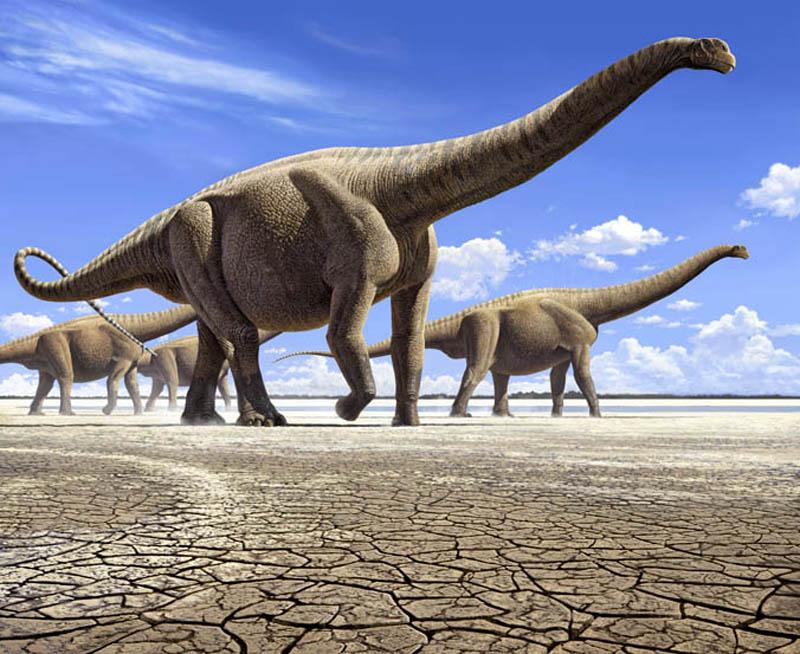 Динозавры: Да, большие. И в чём проблема?