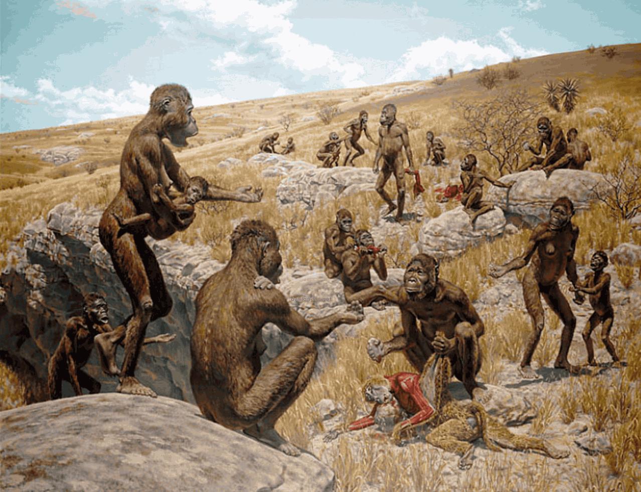 Настоящие австралопитеки: Африканские равнины 4 миллиона лет назад