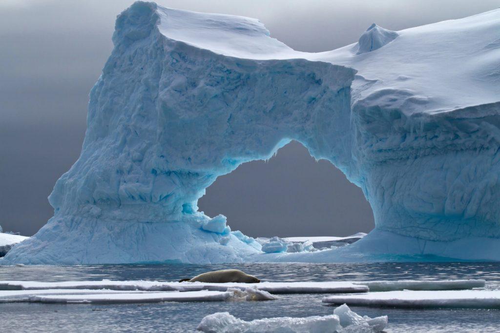 Антарктида: Базы нацистов и пришельцев — правда или вымысел?