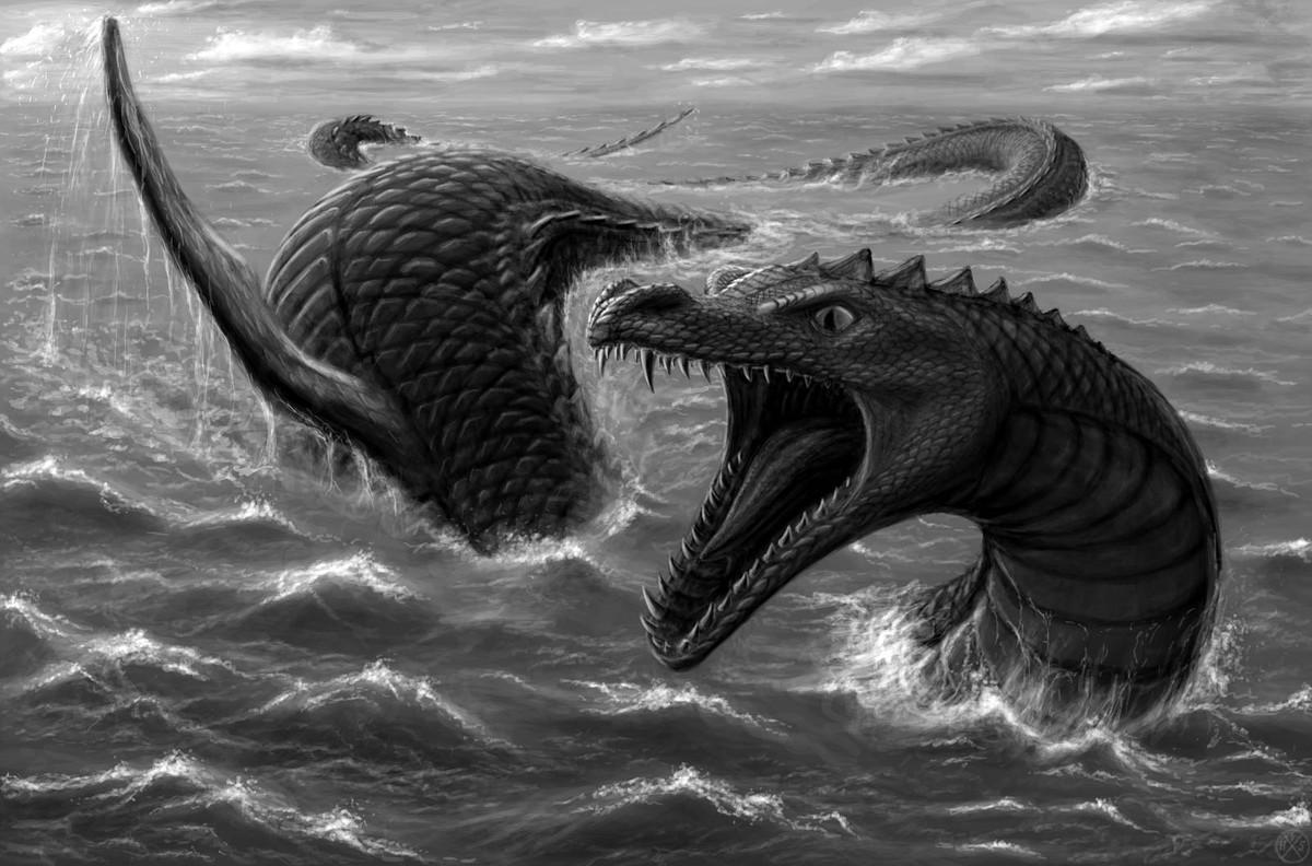 Синий кит: Каких размеров могут достигать морские животные?