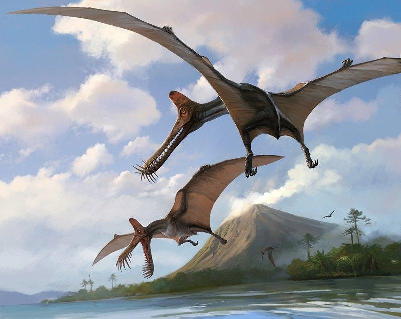 Если бы динозавры не вымерли: Птерозавры