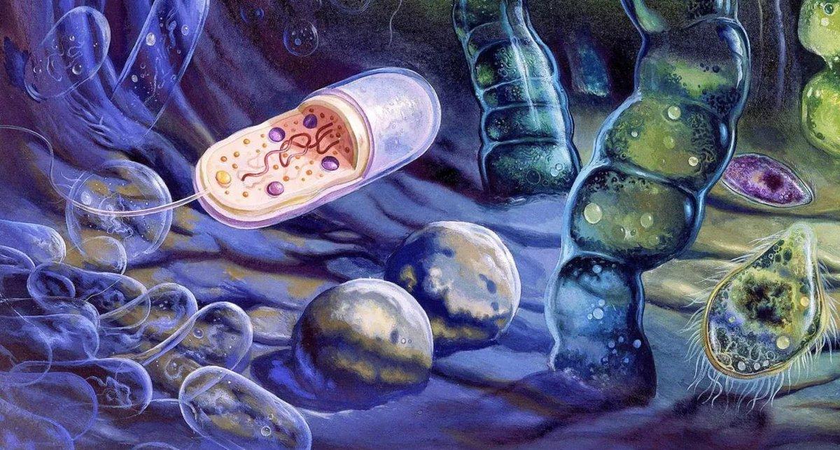 Происхождение жизни, часть 4: Химическая эволюция