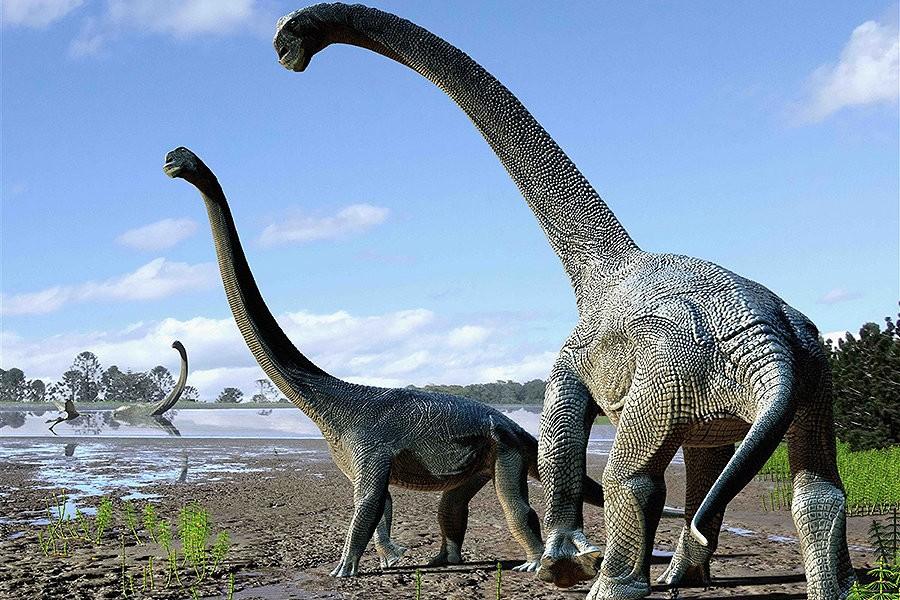 Гигантизм: Когда и почему размеры земных животных уменьшились