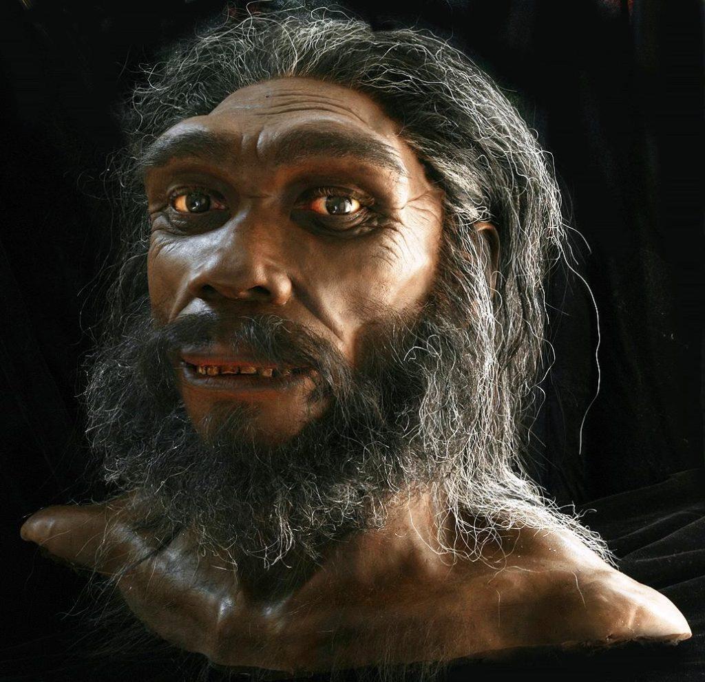 Промашка вышла: Неудачные реконструкции древних животных