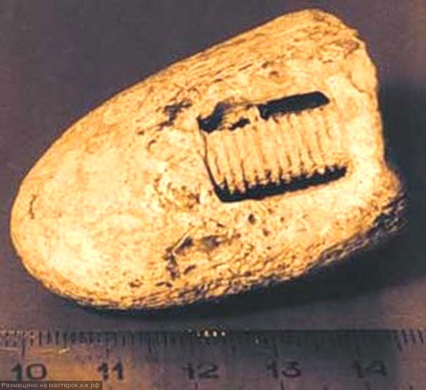 Морские лилии и артефакты запретной археологии