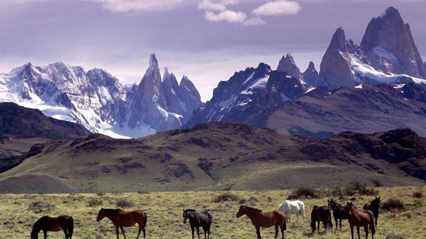 Аргентина: На берегу Серебряной реки