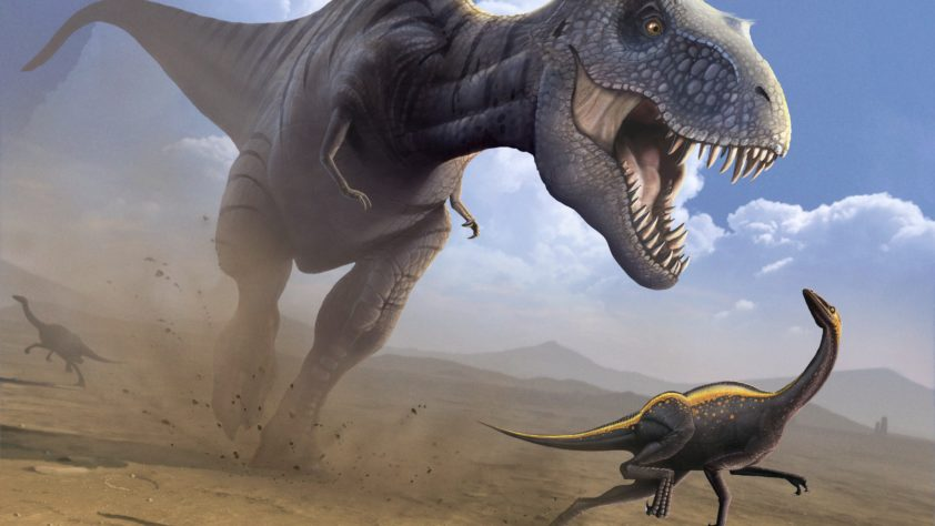 Топ шокирующих заблуждений, связанных с эрой динозавров